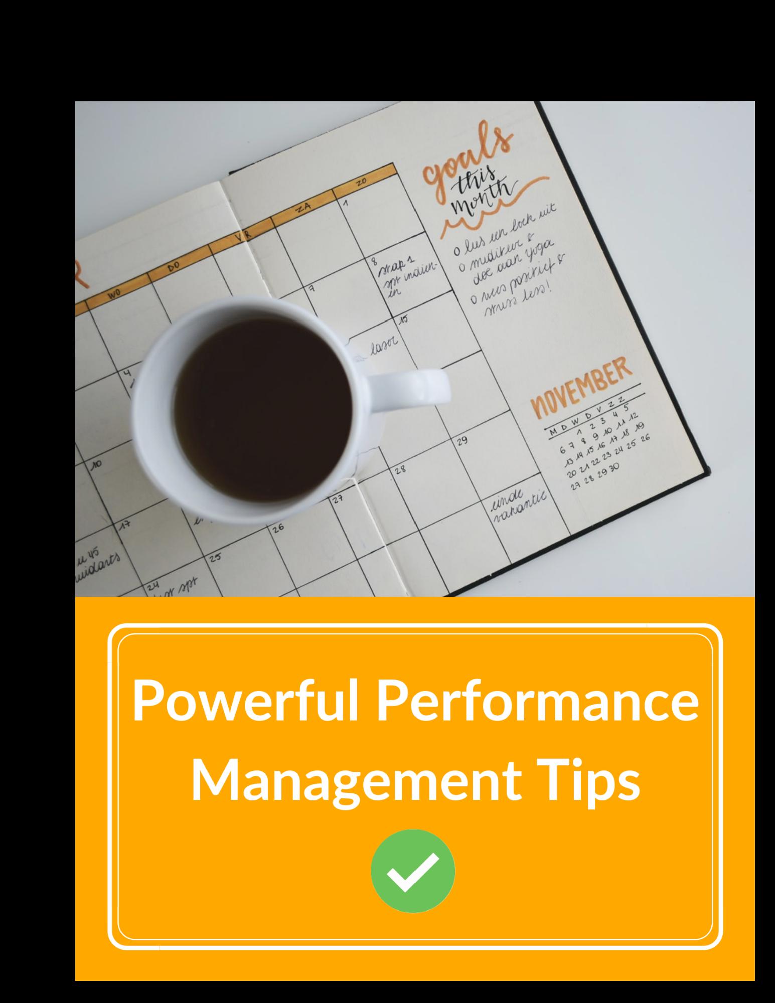 Performance Checklist (1)